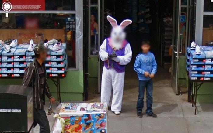 Je n'aime pas les lapins et voilà pourquoi.